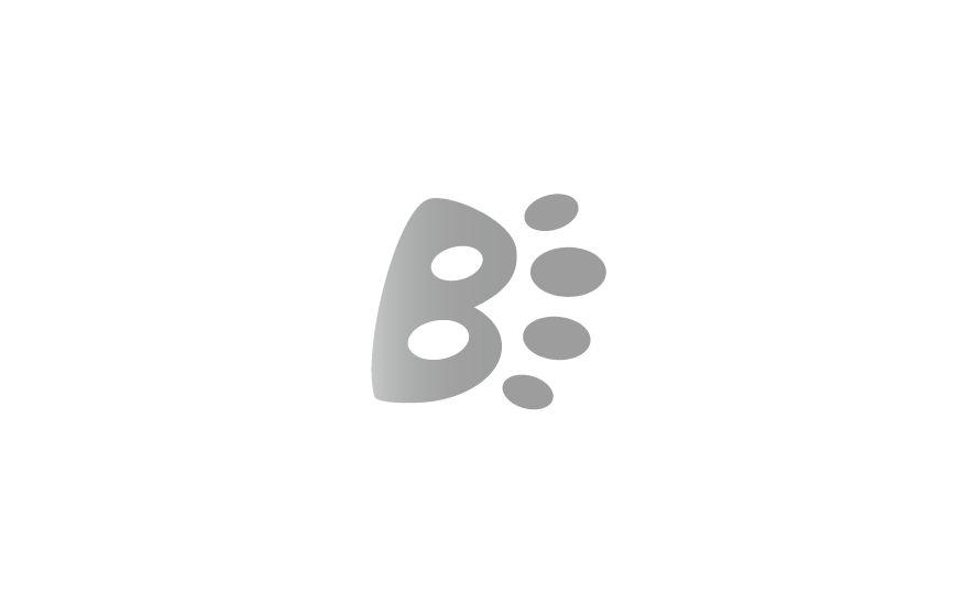 Gestaltung und Werbung für die Kleintierpraxis Ursula Brosig, ein Logotype aus dem Buchstaben B, illustriert wie eine Tatze.