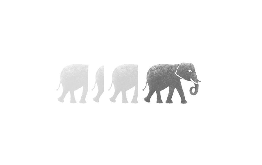 Gestaltung und Werbung für Löwe Medical Consulting and Support. Logotype mit Elefanten über dem Namen Löwe, die hier für Erfahrung stehen.