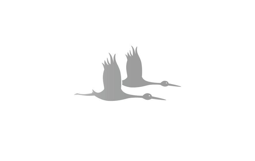 Gestaltung und Werbung für das Moorerlebnis Sterntaler Filze: Logotype mit fliegenden Schwarzstörchen